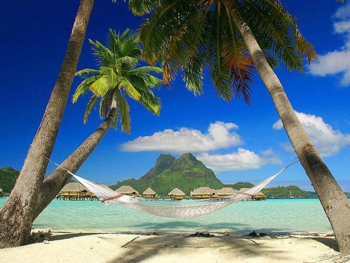 райский остров скачать игру - фото 3