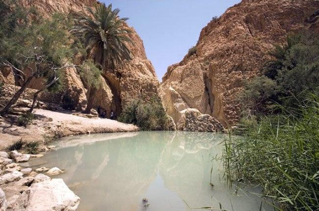 Тунис – необыкновенная страна