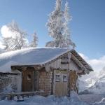 Открываются чартерные программы из России в Австрию и Финляндию