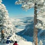 Болгария: все на лыжню!