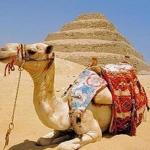 Февральская распродажа туров в Египет