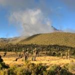 В Танзании пройдет марафон «Килиманджаро»