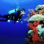 ТОП-10 лучших мест для дайвинга в Азии